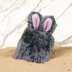 Airpods Case Bunny